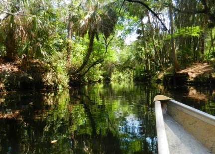 Imperial River Bonita Springs with canoe