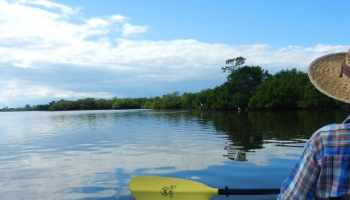 Ten Best Kayaking Spots In South Florida Florida Rambler - The florida kayaking guide 10 must see spots for paddling