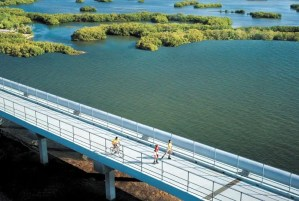 cross bay bridge on the pinellas trail