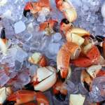 Naples fest kicks off stone crab season