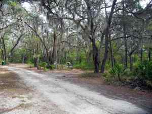 Primitive campsite at Tiger Bay State Forest