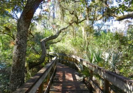 Boardwalk at Turkey Creek Sanctuary