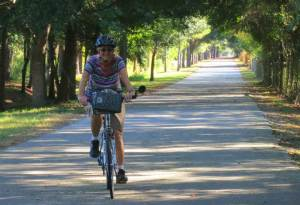 Smooth, wide and shaded: The West Orange Trail at its best