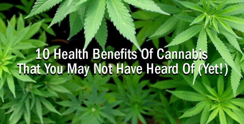 10 Health Benefits Of Cannabis That You May Not Have Heard Of (Yet!)