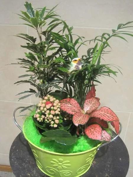original centro de plantas adornado con pajaritos