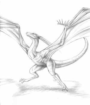 Pencil sketch of Sleet.