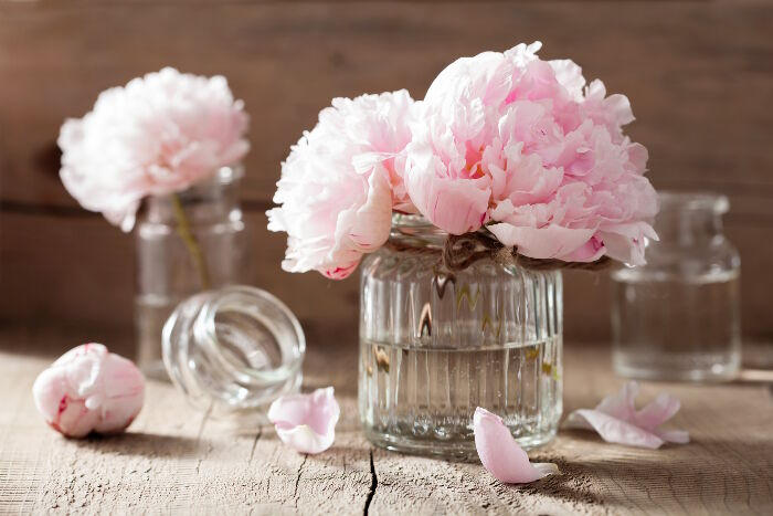Peony Flower Meaning   Flower Meaning beautiful pink peony flowers bouquet in vase