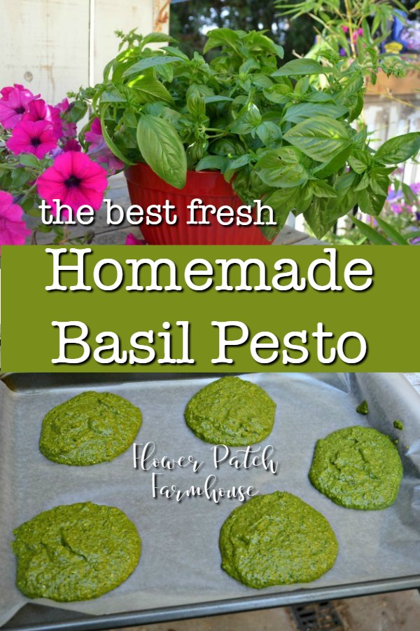 collage with basil leaves and pesto mounds on cookie sheet with text overlay, homemade basil pesto, Flower Patch Farmhouse
