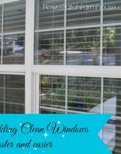 Faster and Easier Window Cleaning Tips from a Pro!
