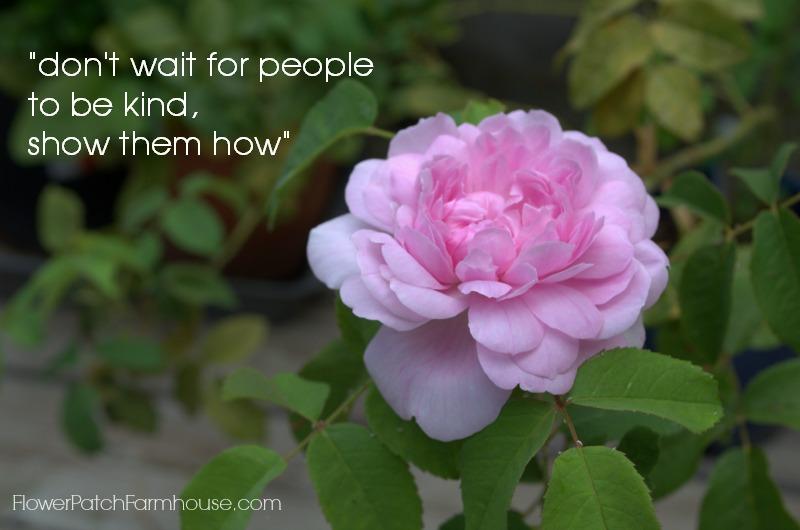 Don't wait for people, FlowerPatchFarmhouse.com