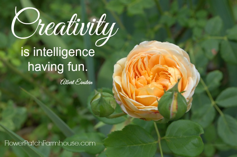 Intelligence Having Fun, FlowerPatchFarmhouse.com