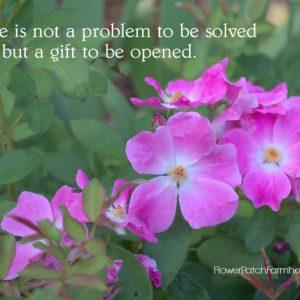 Life is Not a Problem Quote, FlowerPatchFarmhouse.com