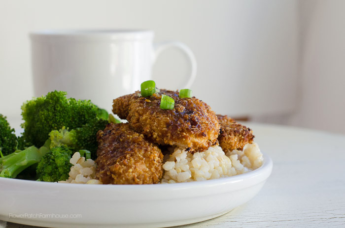 Honey Garlic Chicken, FlowerPatchFarmhouse.com