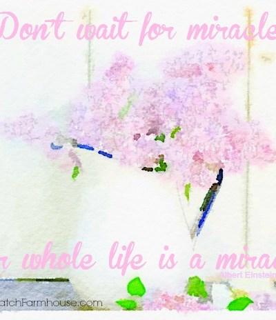 Don't Wait for Miracles, FlowerPatchFarmhouse.com