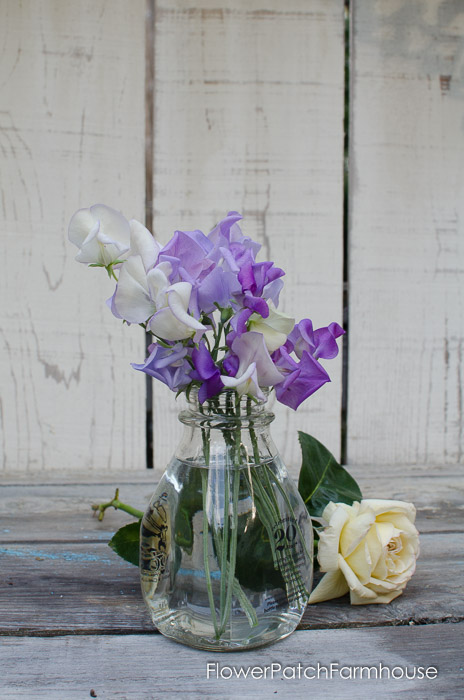 Sweet Pea Bouquet, FlowerPatchFarmhouse.com