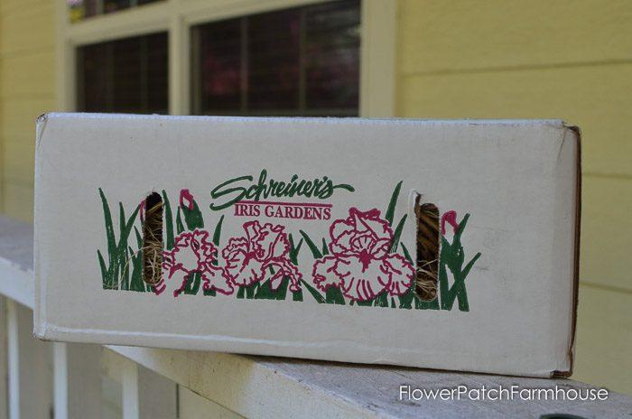 Box from Schreiner's Iris garden, FlowerPatchFarmhouse.com (1 of 1)