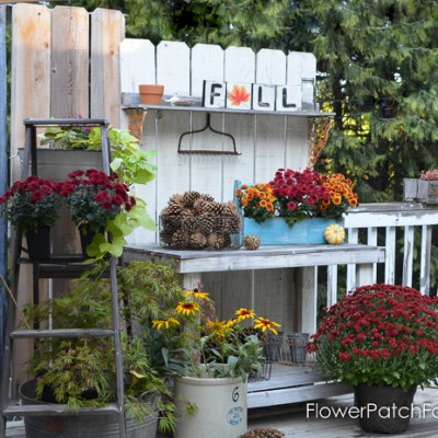 Fall Potting Bench dressed up for the season, Autumn decor and diy projects galore! FlowerPatchFarmhouse.com