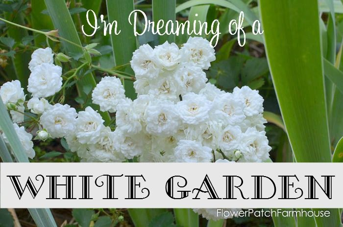 I'm dreaming of a White Garden, FlowerPatchFarmhouse.com