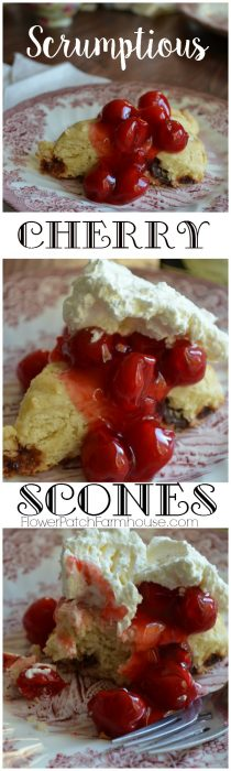 A fabulous taste treat, great with afternoon tea or a cup of coffee. Enjoy these scrumptious cherry scones. FlowerPatchFarmhouse.com