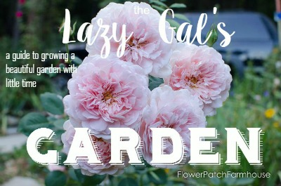 The Lazy Gal's Garden, a guide to growing a beautiful garden with little time-001