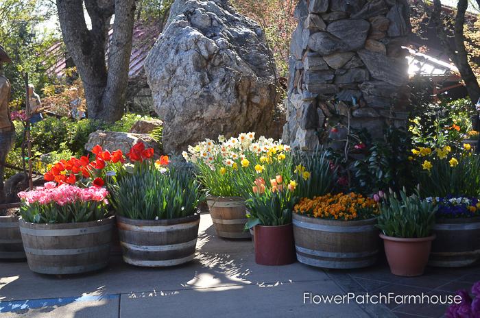 Ironstone March 2016, FlowerPatchFarmhouse.com (55 of 77)