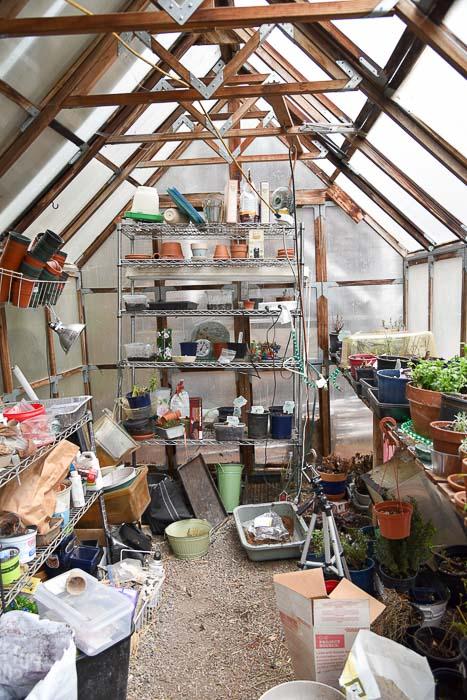 Inside the greenhouse, Garden Journal 2