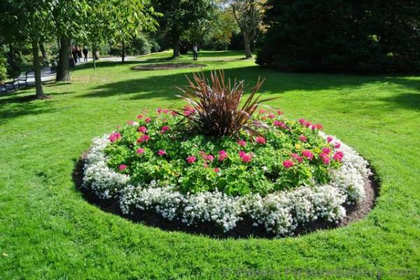 circular flower garden designs Circular mini garden with white red flowers and dark grass