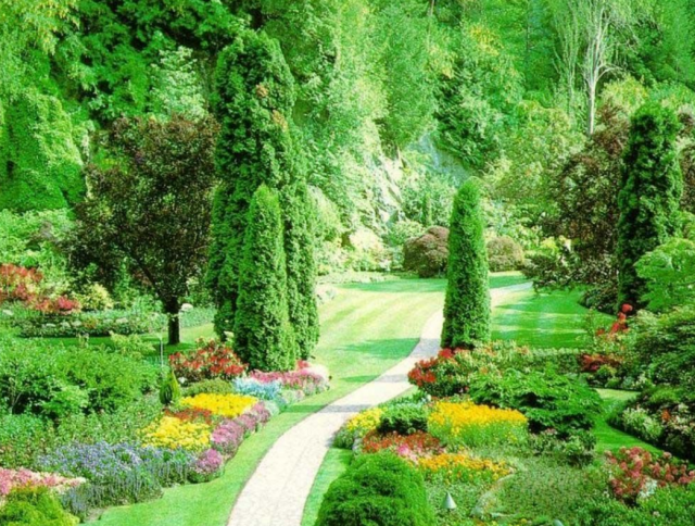 Beautiful garden photos with fulll of colorful flowers and elegant     Beautiful garden photos with fulll of colorful flowers and elegant trees PNG