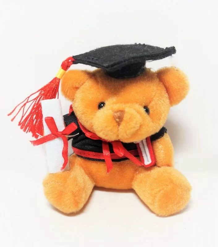brown grad bear