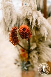 bohochic-style-flowerscence-6