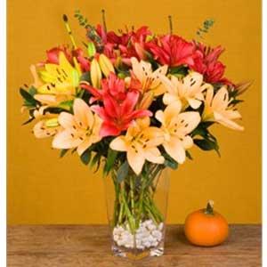 Organic Thanksgiving Flowers