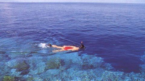Snorkeling, Bunaken national park