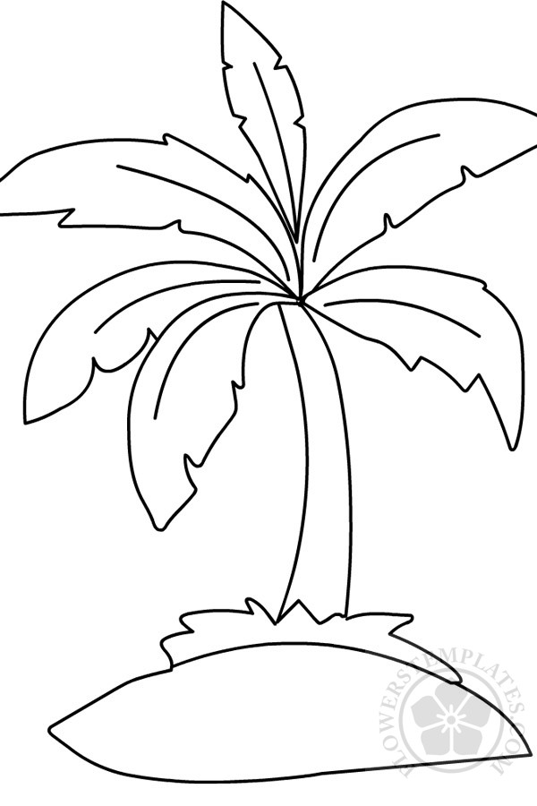 Palm Tree Coloring Page Flowers Templates