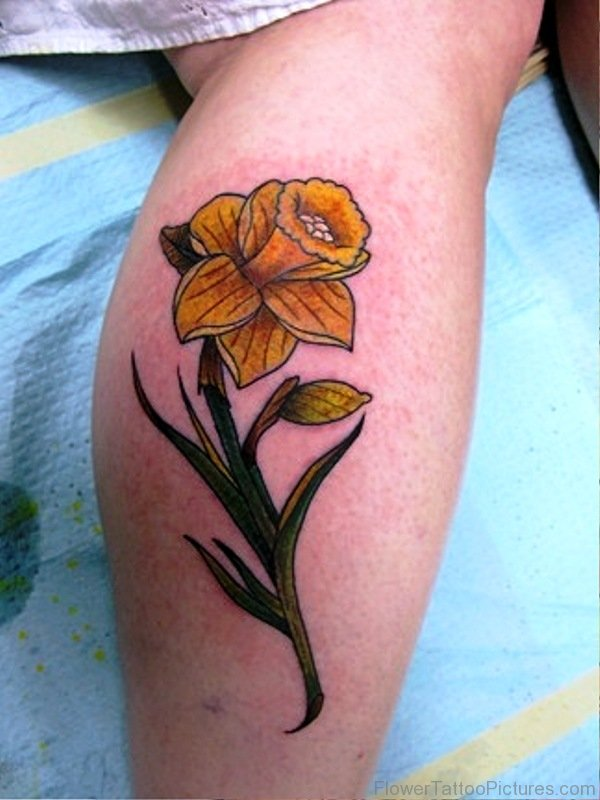 And Black Daffodil Grey Tattoo