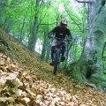 MTB Freeride Downhill Monte Tamaro