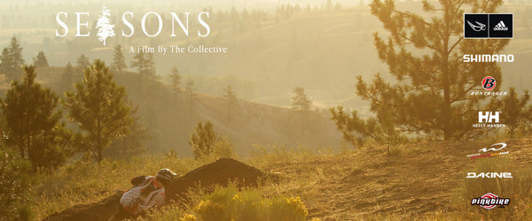 The Collective - News from THE COLLECTIVE!