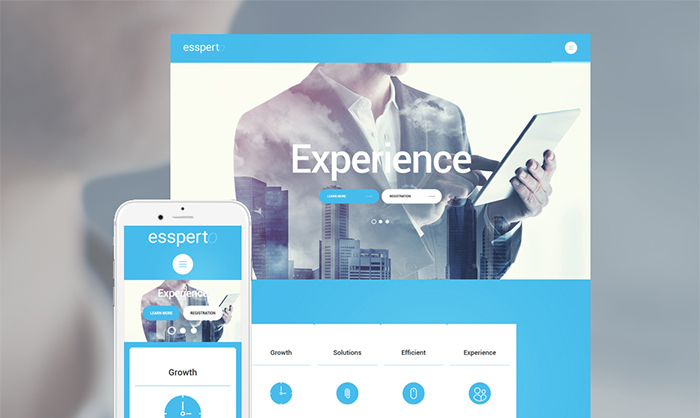 Business Expert WordPress Theme