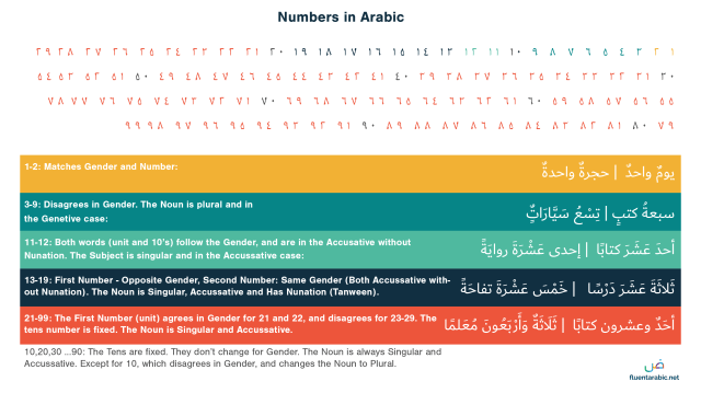 Arabic Numbers - 23 to Infinity (Complete Guide)