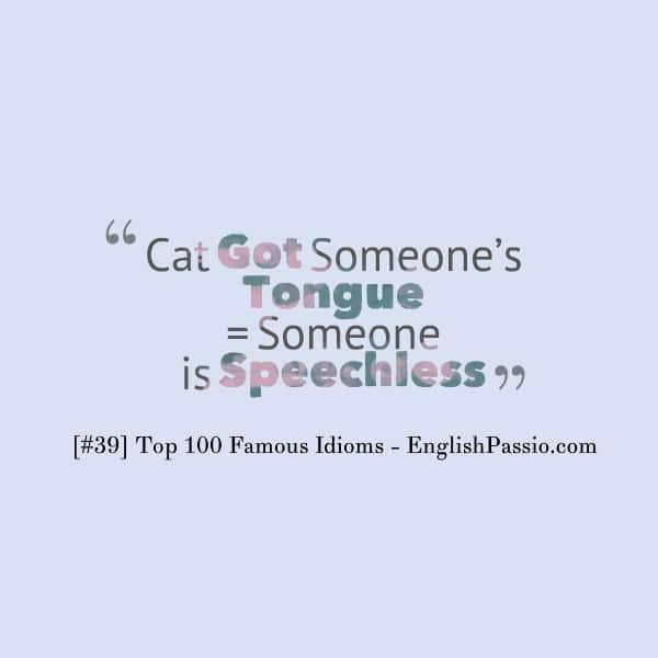idiom 39 cat got someone tongue