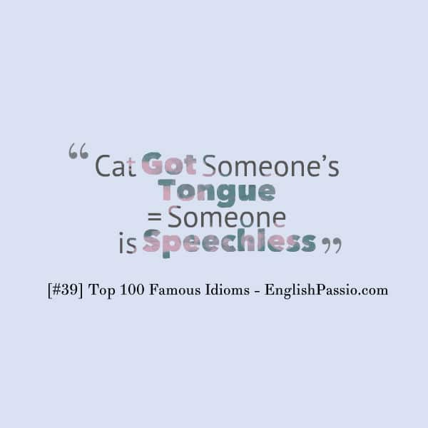 idiom 39 cat got someone tongue