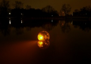 protozoa-nacht
