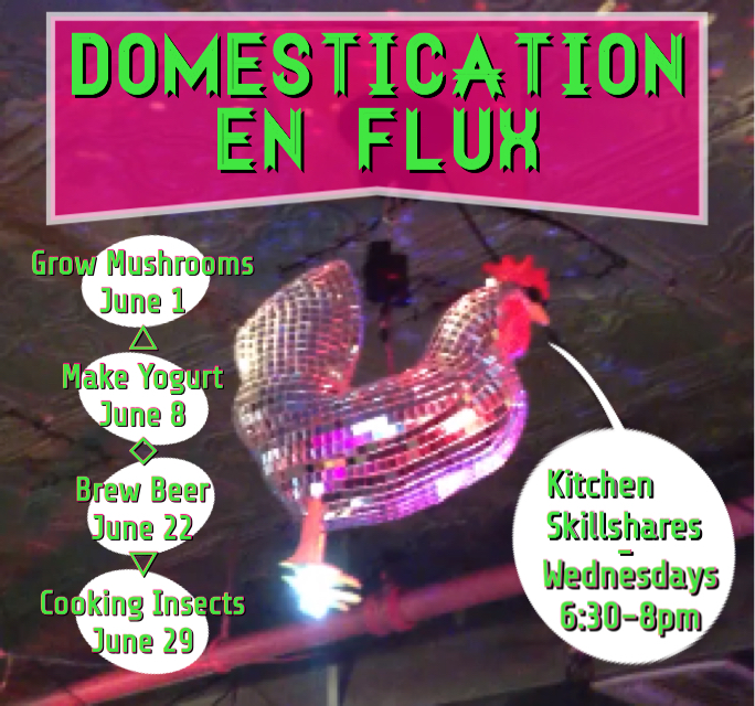 Domestication En Flux