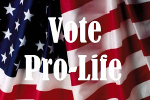 Vote ProLife Flag