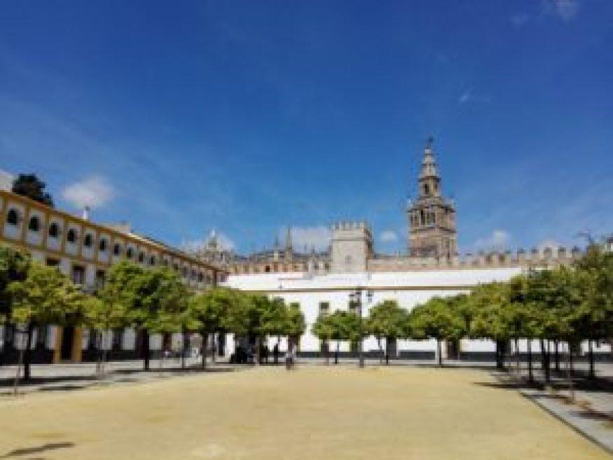 Plaza a la salida de los Alcázares Sevilla © Propiedad de Fly and Grow