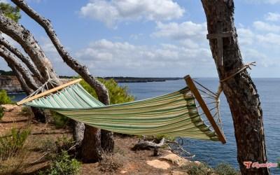 Ruta de s'Estanyol a Vallgornera – excursión fácil en el sur de Mallorca