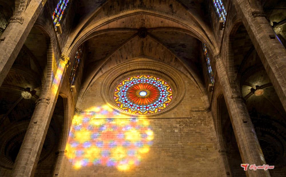 espectaculo de ocho de la catedral de Palma
