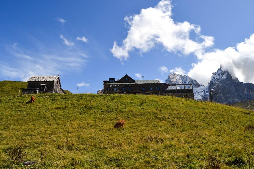 Pradera en las Dolomitas