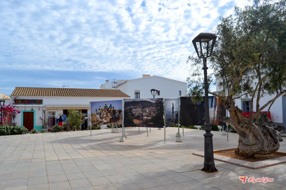 exposición en Sant Francesc