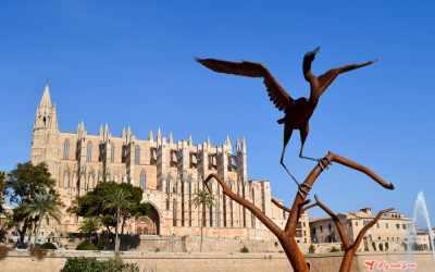 Guía completa de Palma de Mallorca