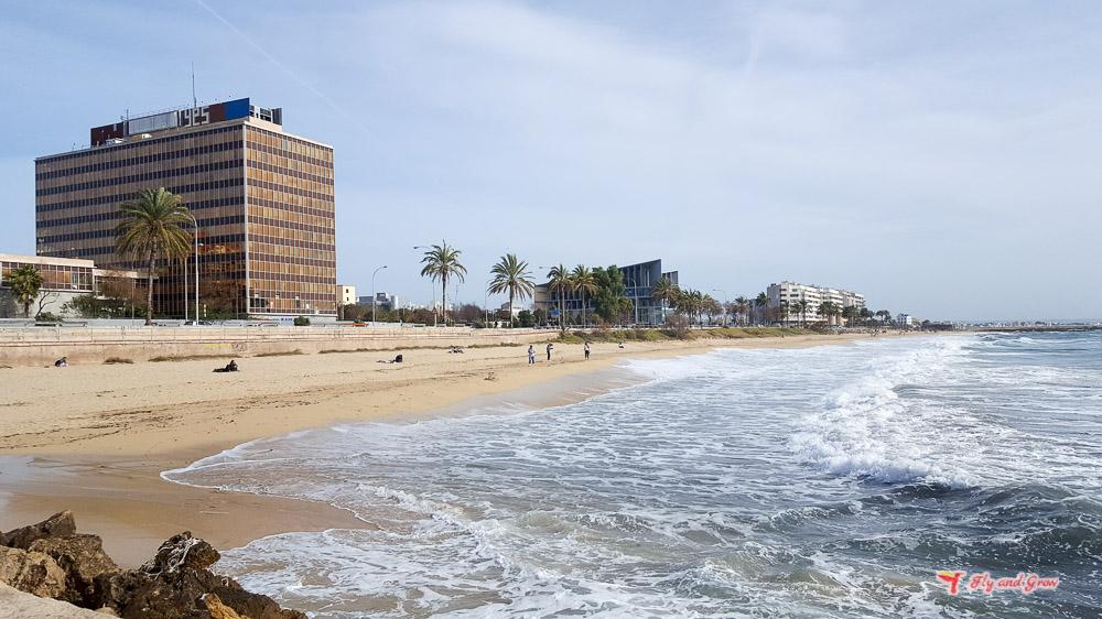 playa urbana de Palma